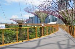 滨海湾公园的Supertree树丛在新加坡 免版税库存图片