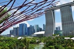 滨海湾公园的Supertree树丛在新加坡 免版税图库摄影