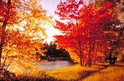 海湾北部颜色的秋天 免版税库存照片