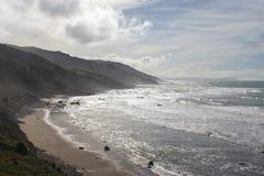 海湾南部海岸的hawkes 库存照片