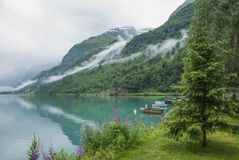 海湾和山在挪威 免版税库存照片
