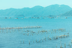 海湾和港口越南的 库存照片