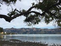 海湾在Akaroa 免版税库存图片