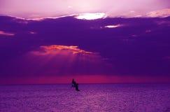海湾墨西哥日落 库存图片