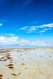 海湾处于低潮中 免版税图库摄影