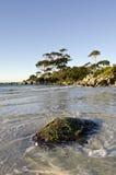 海湾射击横向延迟轻的塔斯马尼亚岛 库存图片