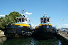 海湾巨人和海洋巨人拖轮 免版税图库摄影
