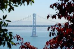 海湾桥梁风景的奥克兰 免版税库存图片