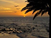 海湾海滩海岛王国酸值mak省泰国日落热带泰国的trat 免版税库存照片