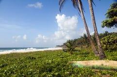 海湾海滩玉米海岛未开展长的尼加拉&# 库存照片