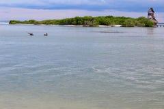海湾的宁静 免版税库存图片