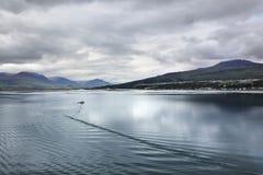 海湾的风景看法,阿克雷里(冰岛) 库存照片