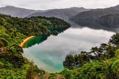 海湾看法在女王夏洛特路,新西兰的 免版税库存图片