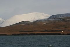 海湾科尔斯spitzbergen 免版税库存图片