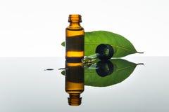 海湾精油,月桂叶油,月桂叶,琥珀色的玻璃瓶,吸管 免版税库存照片