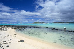 海湾蓝色海岛盐水湖毛里求斯 免版税库存图片