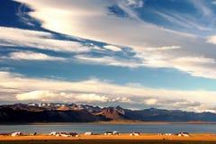 海湾西方的冰岛 库存图片