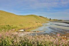 海湾视图足迹,土狼小山地方公园,东湾,北加利福尼亚 免版税库存照片