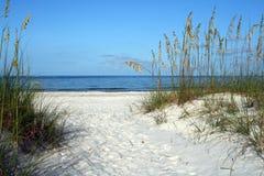 海湾视图 库存图片