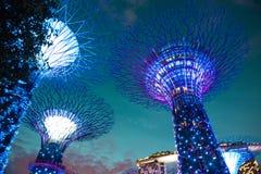 海湾从事园艺Singapur 免版税库存照片