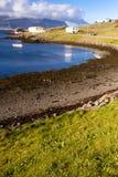 海湾djupivogur冰岛视图 免版税图库摄影