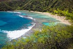 海湾hanauma夏威夷奥阿胡岛 免版税库存照片