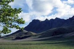 海湾hawkes新的高峰tamata西兰 免版税库存照片