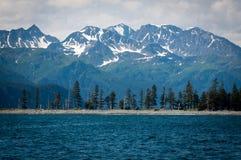 海湾kenai国家公园 免版税图库摄影