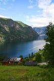 海湾Sognefjord,挪威 库存图片
