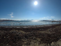 海滨和阳光 库存照片