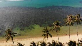 海滨的东方房子 可爱的东方村庄和绿色位于风平浪静海岸的可可椰子寄生虫视图  股票视频
