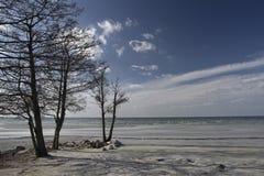 海滨 库存图片