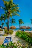 海滨DEL卡门,墨西哥- 2017年11月09日:Playacar海滩的未认出的游人在加勒比海的在墨西哥 免版税库存图片