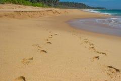 海滩、波浪和脚步 热带的海岛 库存照片