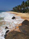 海滩、石头、棕榈树和一个女孩有照相机的 免版税库存照片