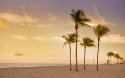 海滩五颜六色的佛罗里达迈阿密日出 免版税库存照片