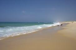 海滩人员一些 免版税库存图片