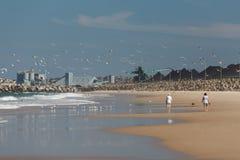 海滩伍伦贡 免版税库存图片