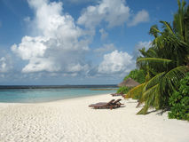 海滩作梦 免版税图库摄影