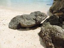 海滩冰砾 库存图片