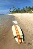 海滩冲浪板 库存图片