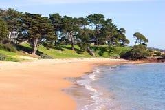 海滩前的cowes 库存照片