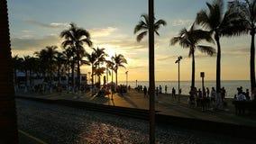 海滩前的malecon在日落的普埃尔托巴利亚塔墨西哥 免版税库存图片