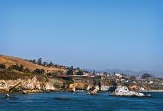 海滩加利福尼亚中央海岸pismo 库存照片
