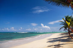 海滩加勒比掌上型计算机 免版税库存照片