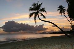 海滩加勒比马提尼克岛salines 图库摄影