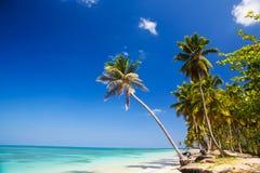 海滩加勒比 库存图片