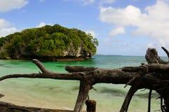 海滩南的太平洋 库存照片