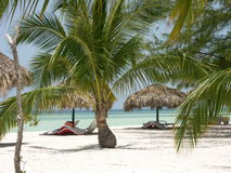 海滩古巴 库存图片