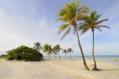 海滩古巴玛丽亚天堂热带的圣诞老人 免版税图库摄影